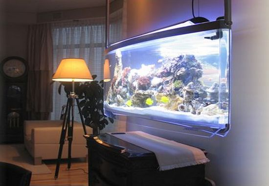 Modern home aquarium design ideas interior decoration for Aquarium interior decoration