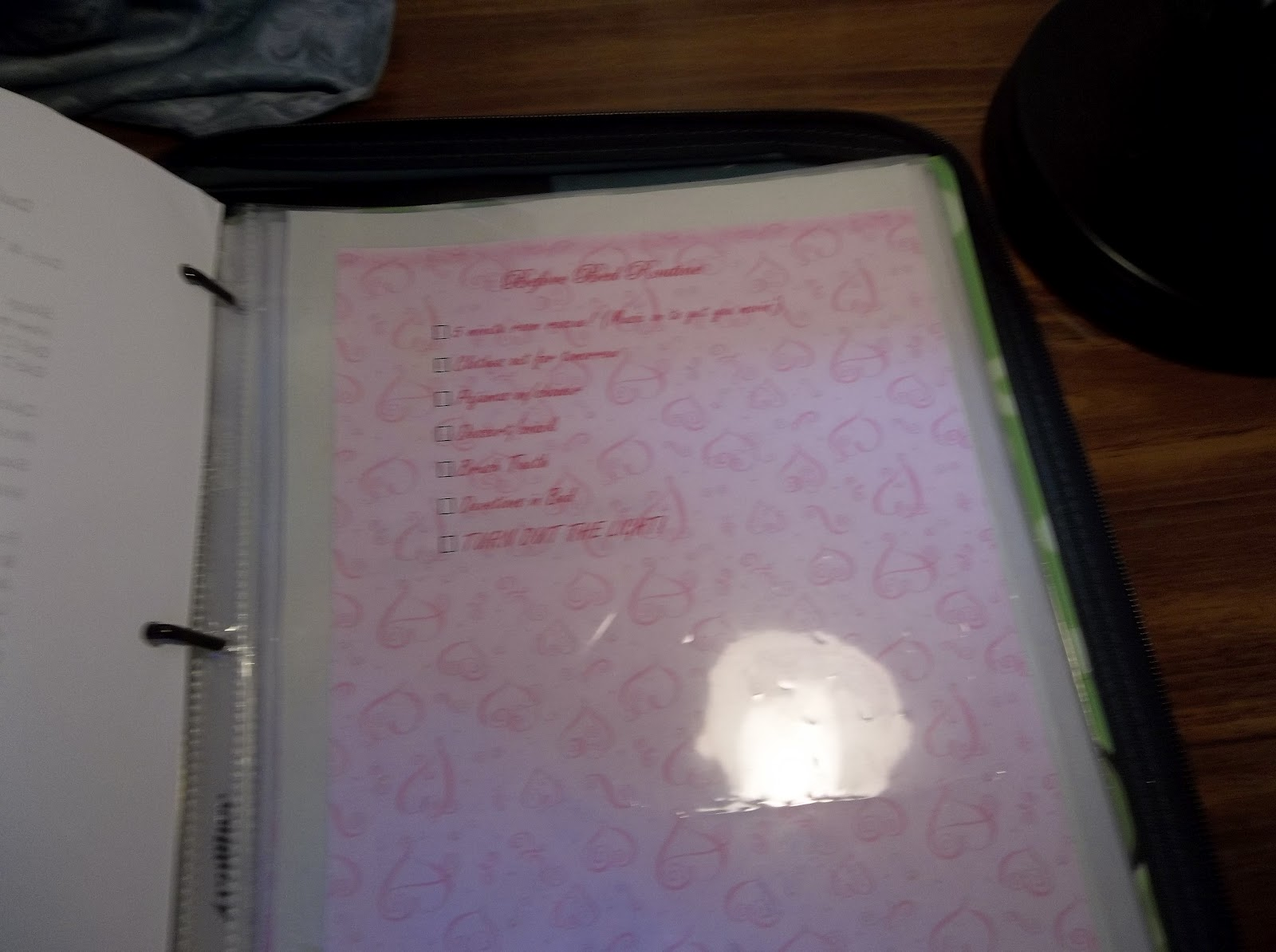 Flylady Body Clutter Control Journal | just b.CAUSE