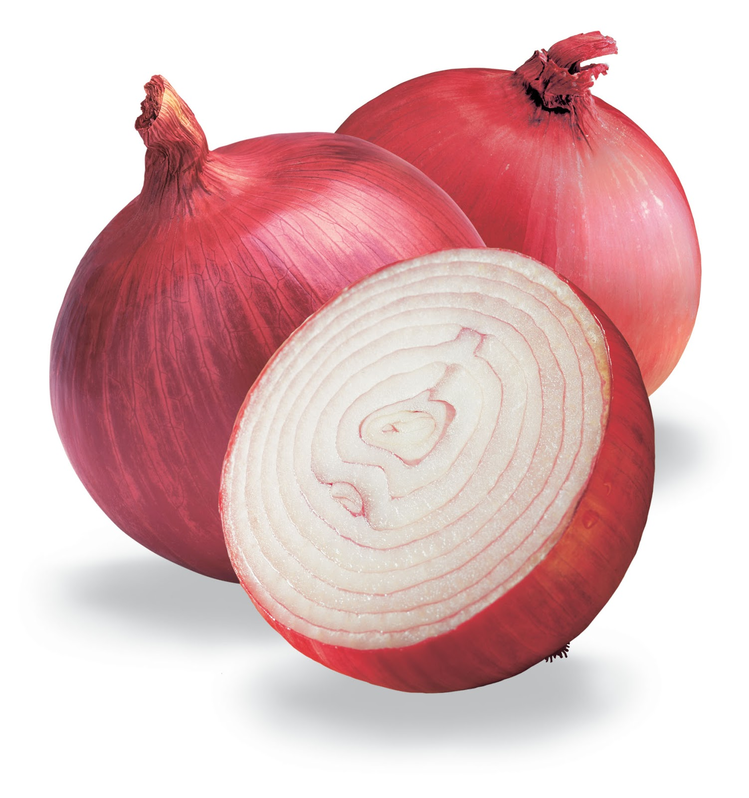 What is onion 42
