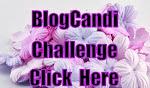 blog candi