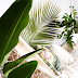 | Friday's wishlist: Tropical Paradise