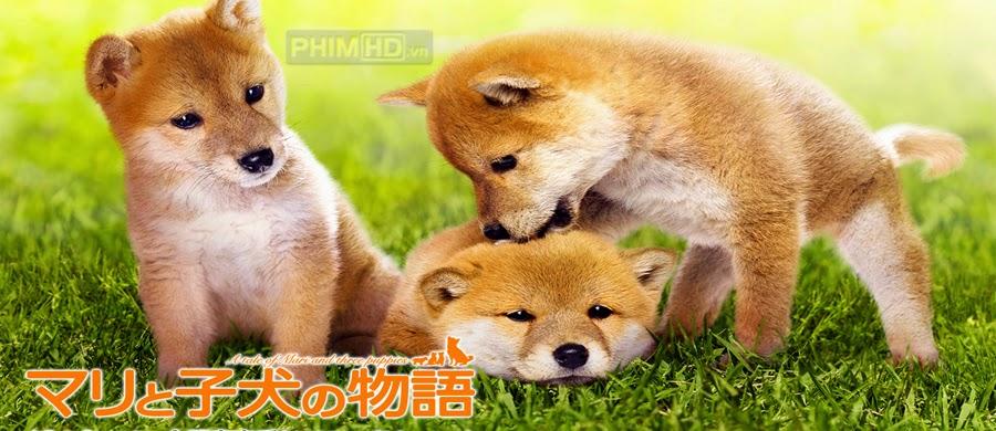Phim Mari Và Ba Chú Cún Con VietSub HD | A Tale Of Mari And Three Puppies 2007