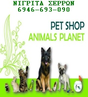 pet shop animals planet