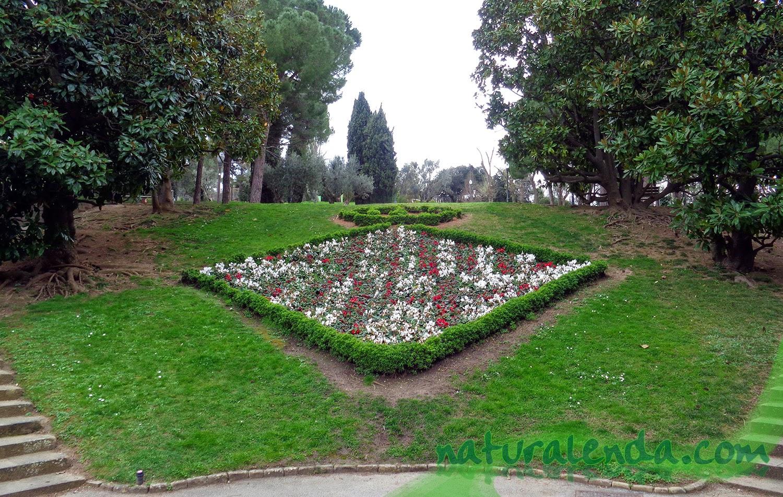 La naturaleza en casa jardines de moss n cinto verdaguer - Jardines de montjuic ...