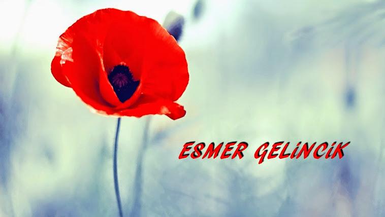 Esmer Gelincik - Günce, Şiir, Edebiyat, Fotoğraf