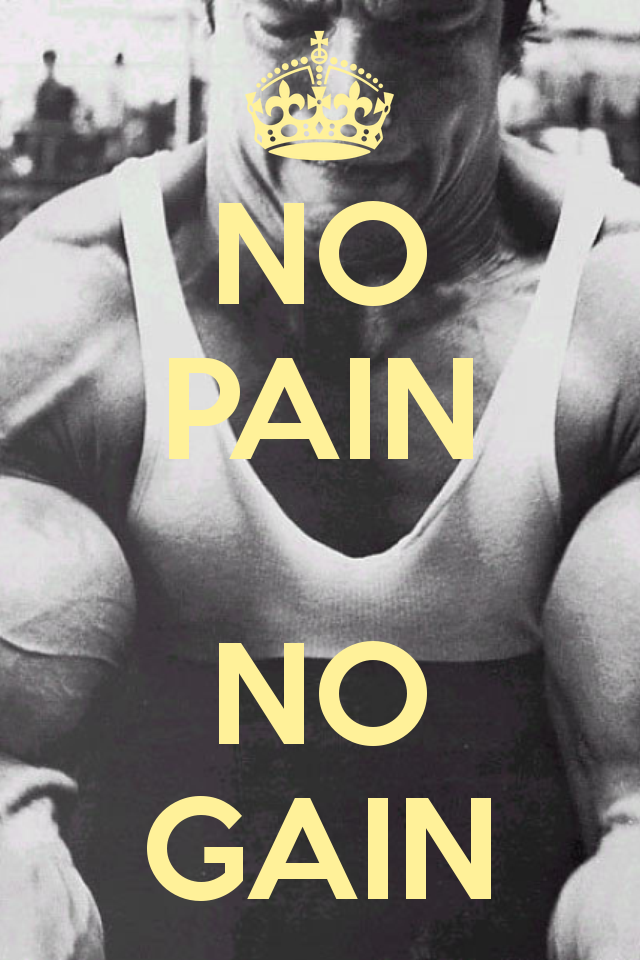no pains no gains essay no pains no gains essay no gains no pains write a paragraph on this proverb