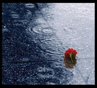 hujan, kenangan