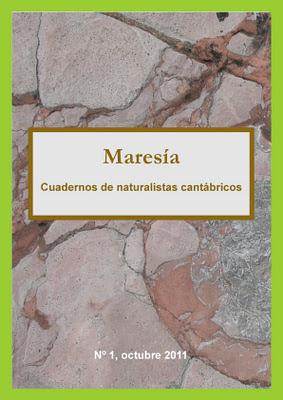 Maresía