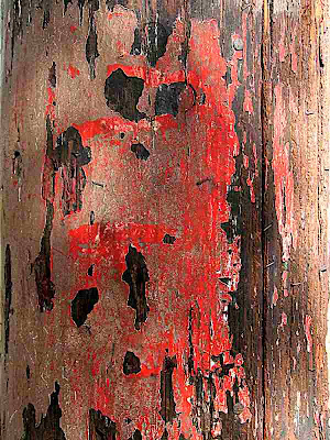 peeling red paint on wood that sort of looks like the face of a dog
