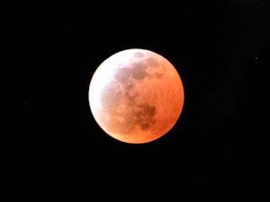Un eclipse tiñó de sangre a la Luna