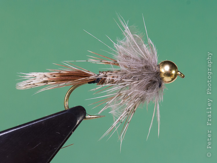 fishing with flies :: blog: hungarian partridge nymph, Fly Fishing Bait