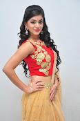 yamini bhaskar latest glam pics-thumbnail-4