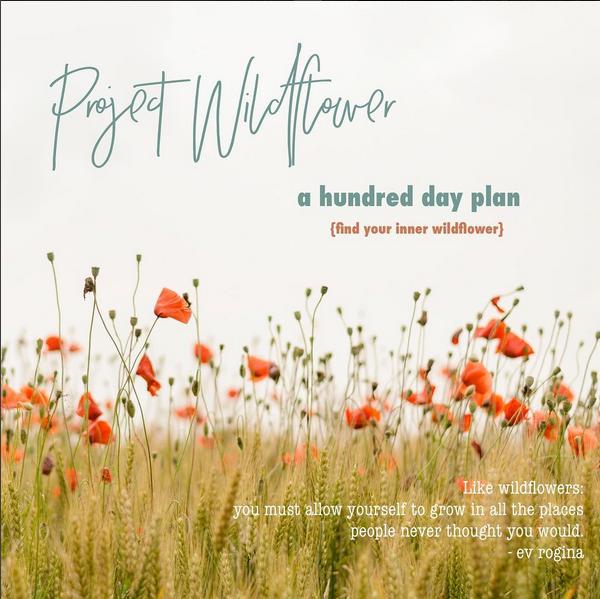 Project Wildflower (2017)
