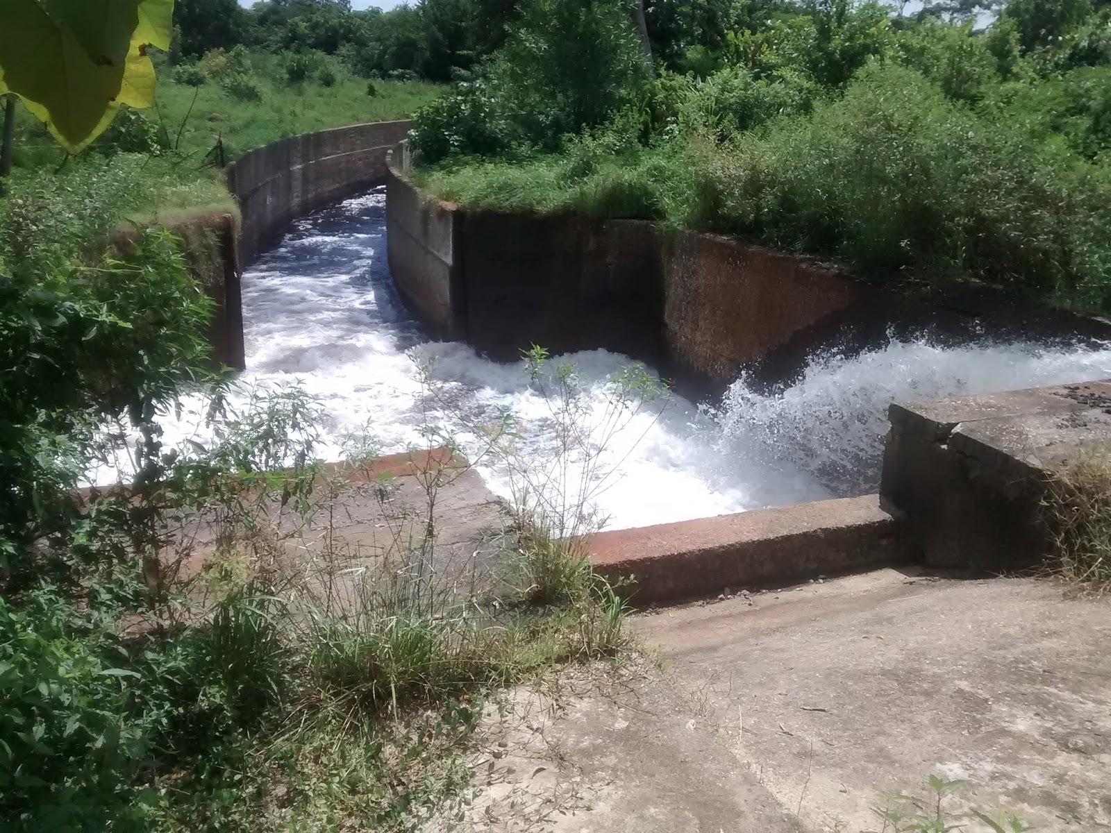 Distrito de riego de mar alabaja agua y tierra un for Alberca para riego