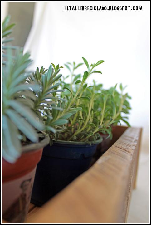El taller reciclado peque o arriate en la cocina - Arriate plantas ...