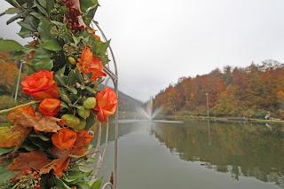 Herbstliche Girlande am Rosenbogen mit Lampionblumen, Eichenlaub, Eicheln und orangen Rosen