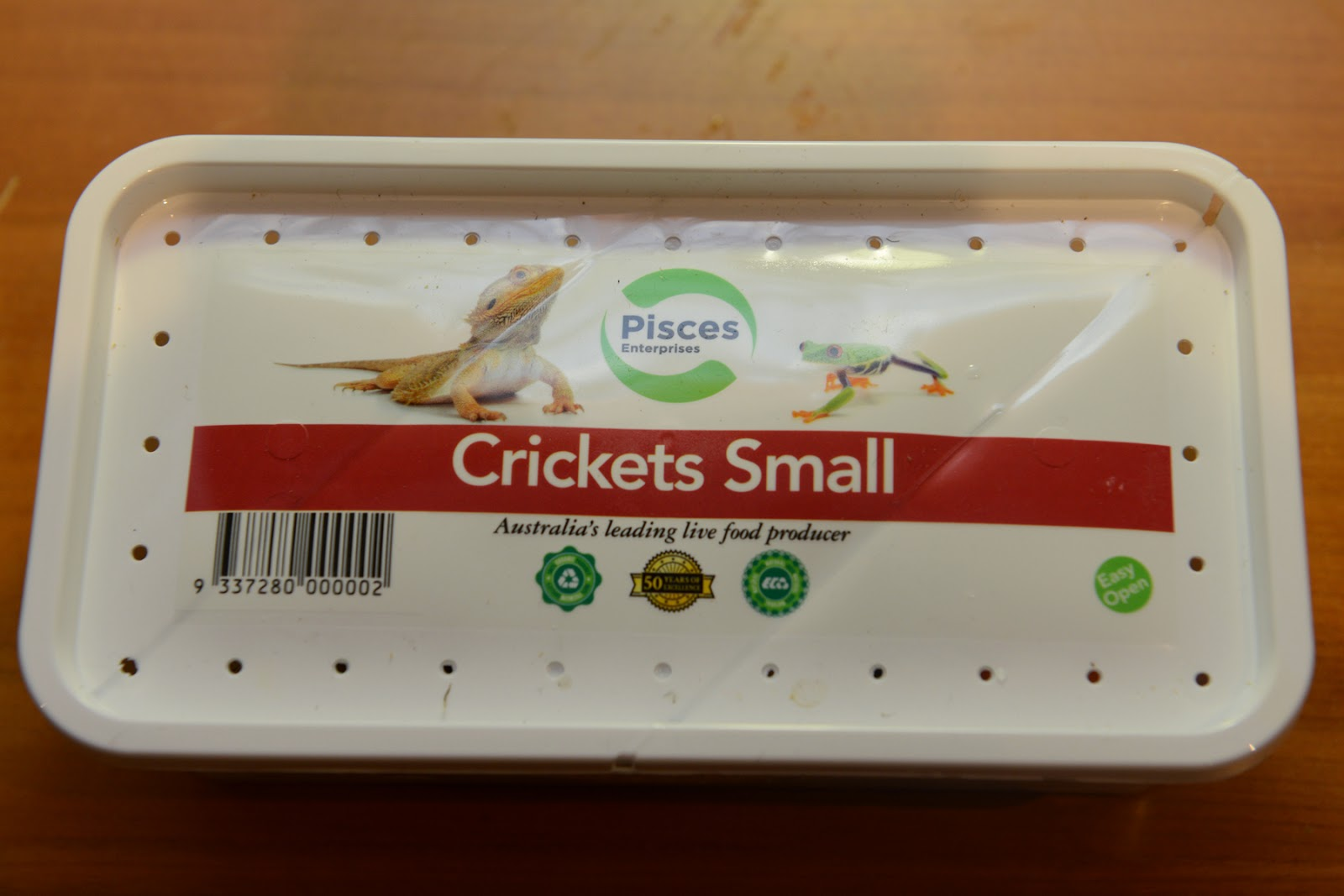 crickets live feed insects protein food security