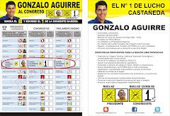 PROPUESTAS DE GONZALO AGUIRRE