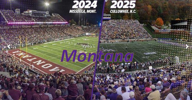 Cats play Montana