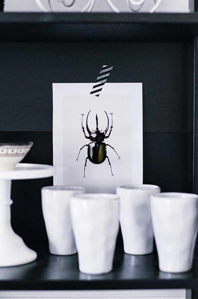 art print insekt, tine k