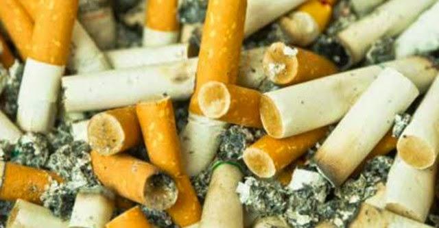 Chế tạo pin từ... đầu lọc thuốc lá