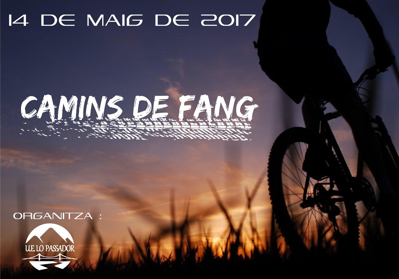 CAMINS DE FANG 2017