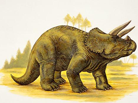 Y Were Dinosaurs So Big AJORBAHMAN'S COLLECTIO...