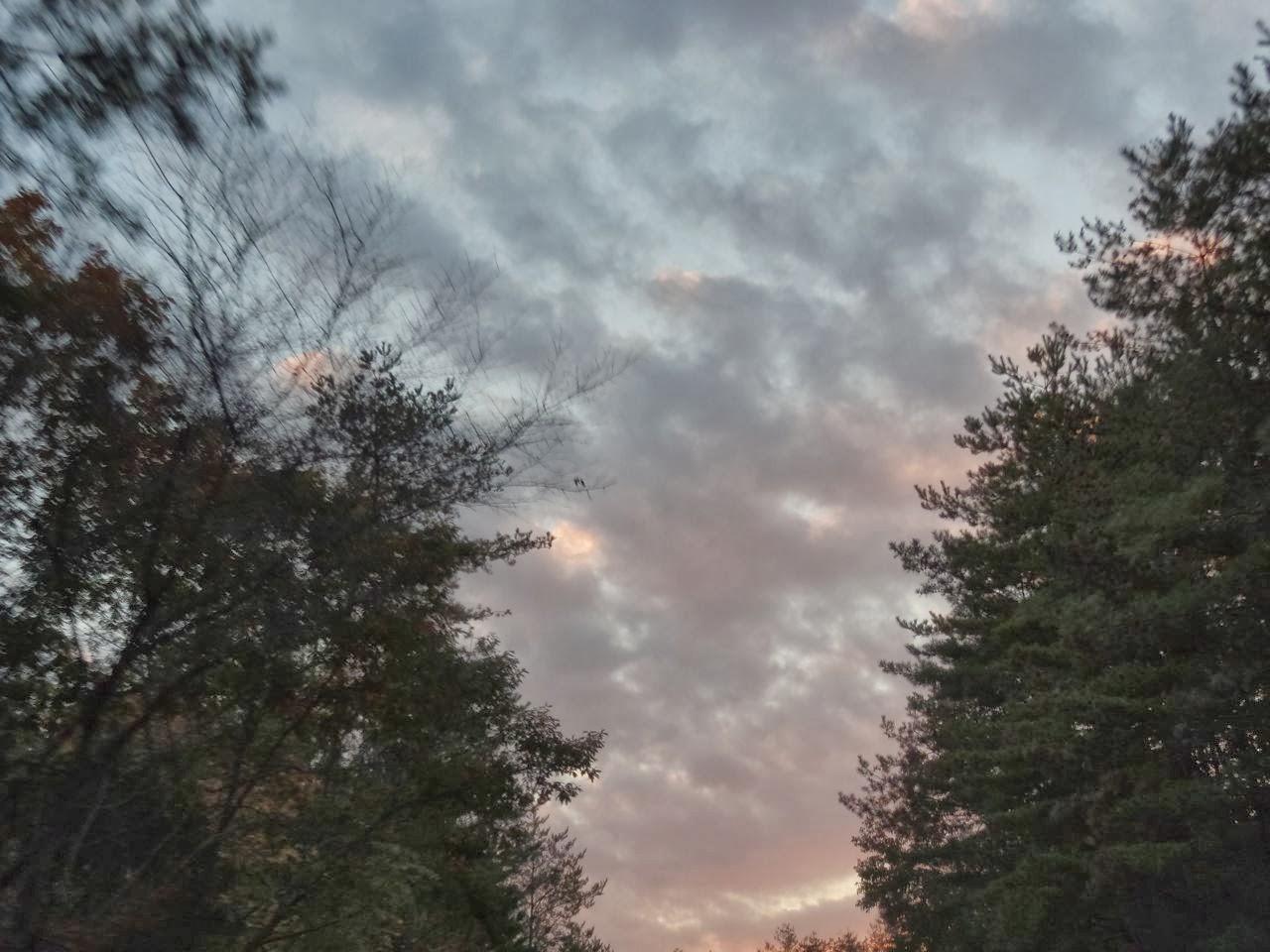浦上玉堂の画像 p1_11