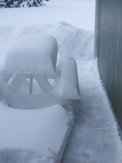 Snow Shovel Pathway
