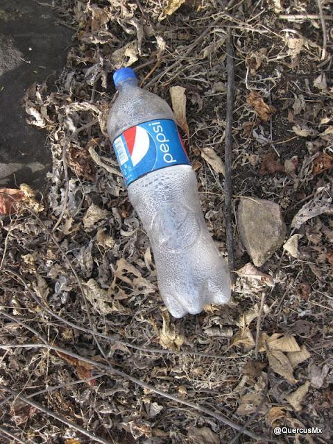 pepsi Cola olvidada en el cerro