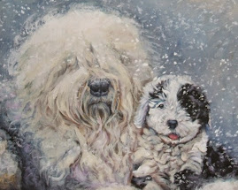 OLD ENGLISH SHEEPDOGS OF THE WEEK