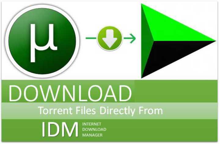 get torrent file