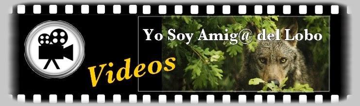 YO SOY AMIG@ DEL LOBO VIDEOS
