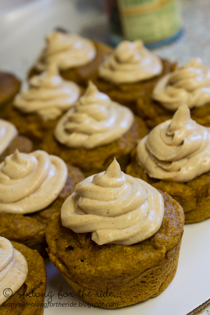 along for the ride pumpkin pupcakes on dog birthday cake recipe pumpkin