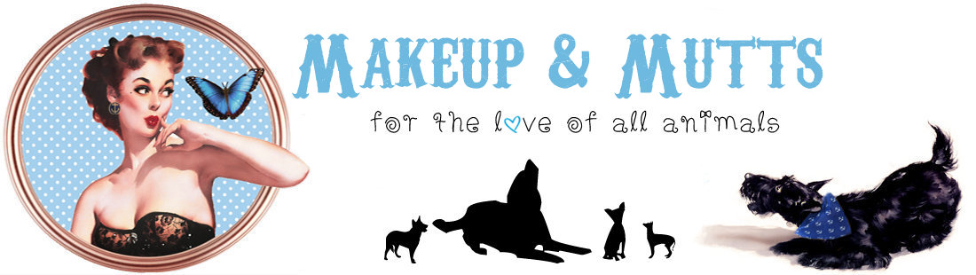 Makeup & Mutts