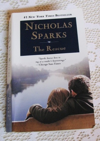 critical essay on the notebook Danielle halm the notebook a novel nicholas sparks 1996 207 pgs page 1 setting and summary of major and minor characters below is an essay on the notebook from anti essays, your source for research papers, essays, and term paper examples.