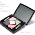 Dior 5 Couleurs Trianon Edition #954 Pink Pompadour from Spring 2014 Trianon Collection