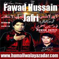 http://ishqehaider.blogspot.com/2013/11/fawad-hussain-jafri-nohay-2014.html