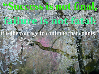 """Success is not final, failure is not fatal: it is the courage to continue that counts."""