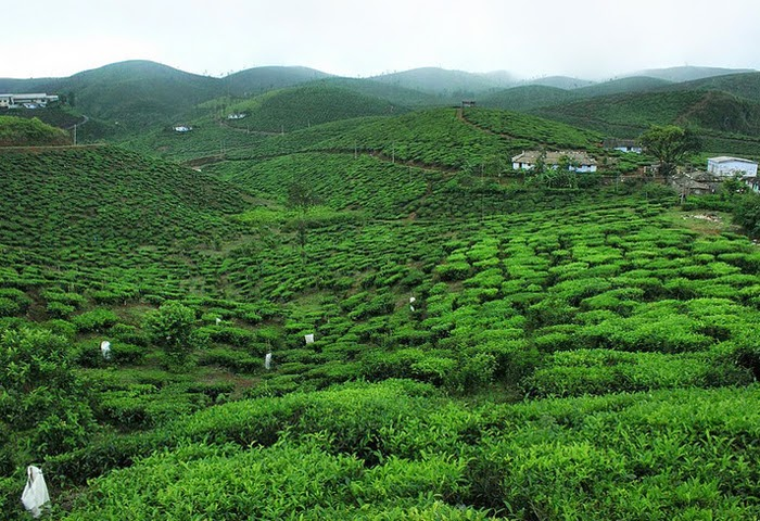 hill stations in idukki , Kerala