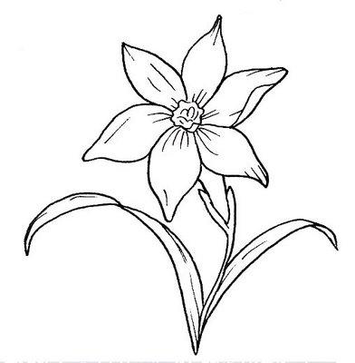 Foto Moldes De Flores Para Pintura Em Tecido 03