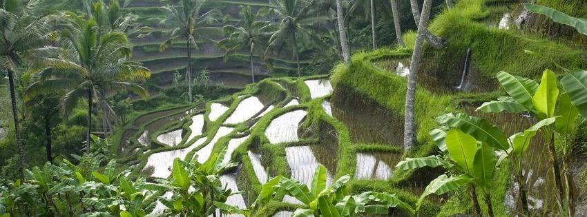 Couverture facebook beauté Bali