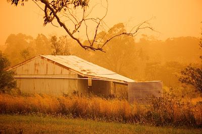 Tormenta de polvo - Dust Storm (16 fotografías)