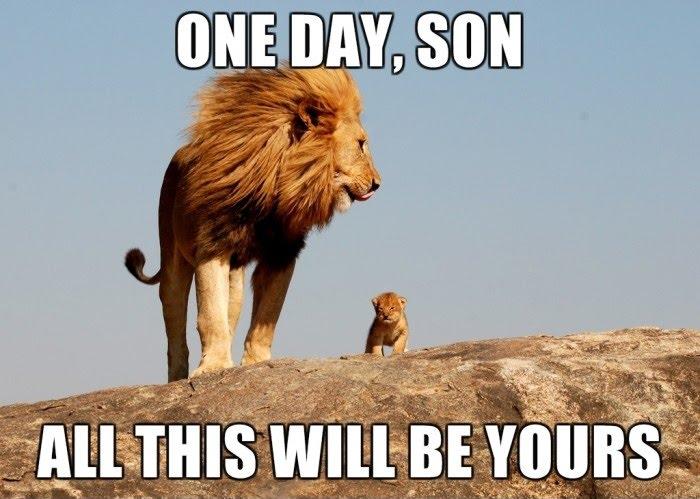 Mufasa And Simba Lion king - Real Life