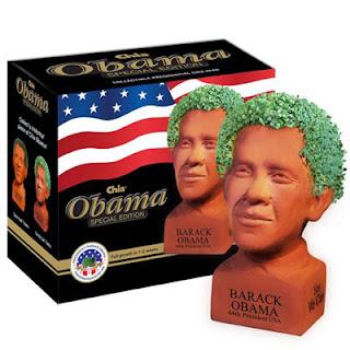 Barak Obama Chia Pet