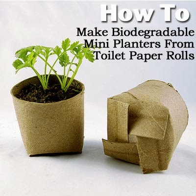 http://plantcaretoday.com/how-to-make-biodegradable-mini-planters-from-toilet-paper-rolls.html#