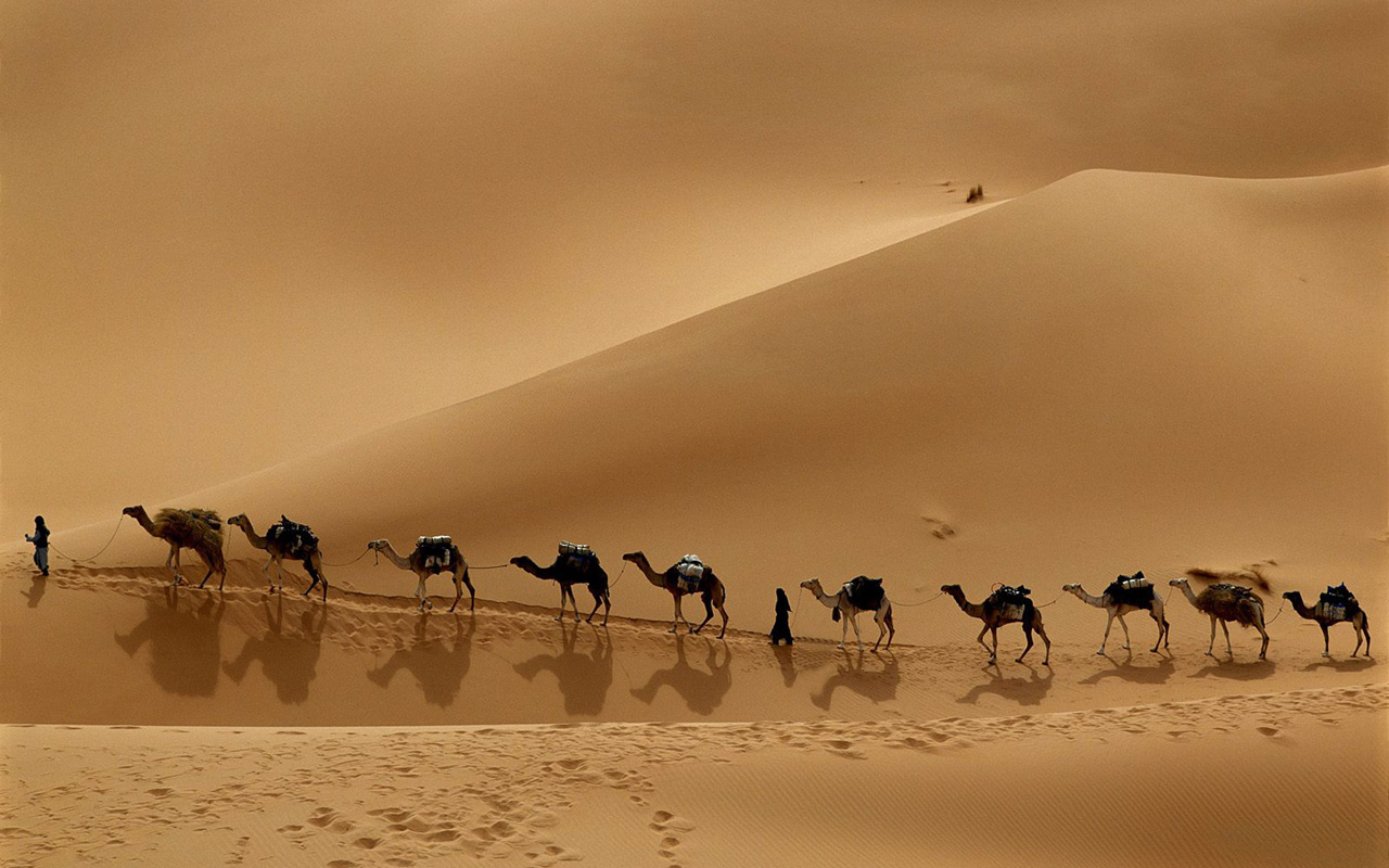 http://4.bp.blogspot.com/-cLNMQ0TuHR8/T_Cb3Cli7mI/AAAAAAAABUo/BPdNbgvd7hI/s1600/libyan-desert-widescreen-caravan-camel-background-wallpapers.jpg