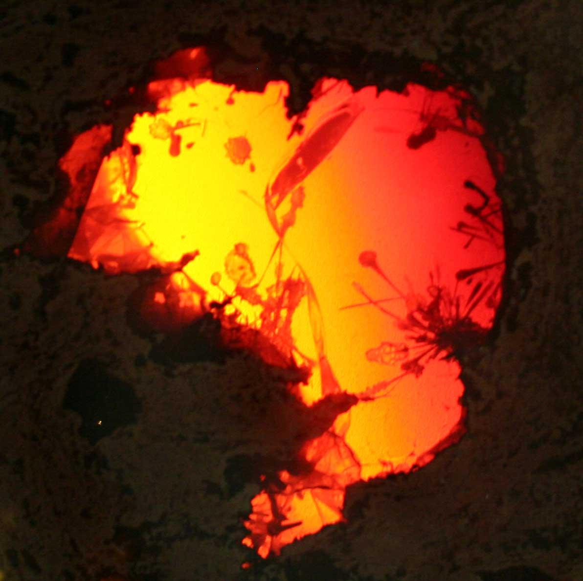 Bilder av Opal - Svart, Brann, Boulder, Rough, Jelly, Crystal