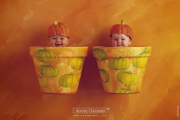 Photo bébé  jumeaux adorable anne geddes