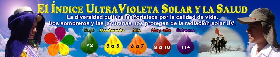 Proyecto IUV